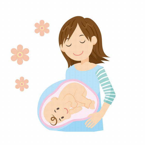 妊娠中の画像