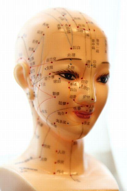 美容鍼灸ツボ人形の写真